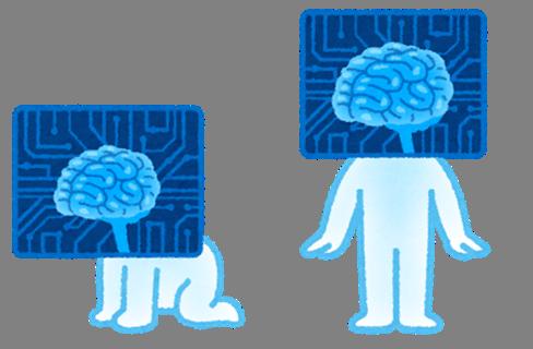 脳の成長速度