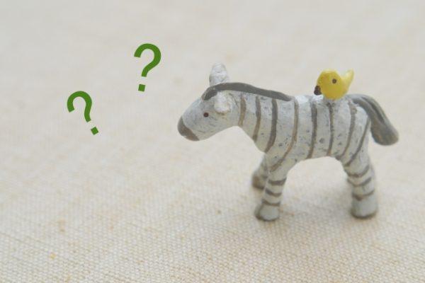 分からない馬