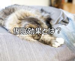 仮眠効果とは?