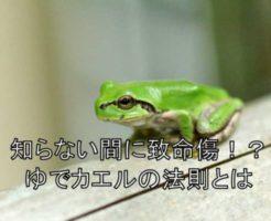 ゆでカエルの法則